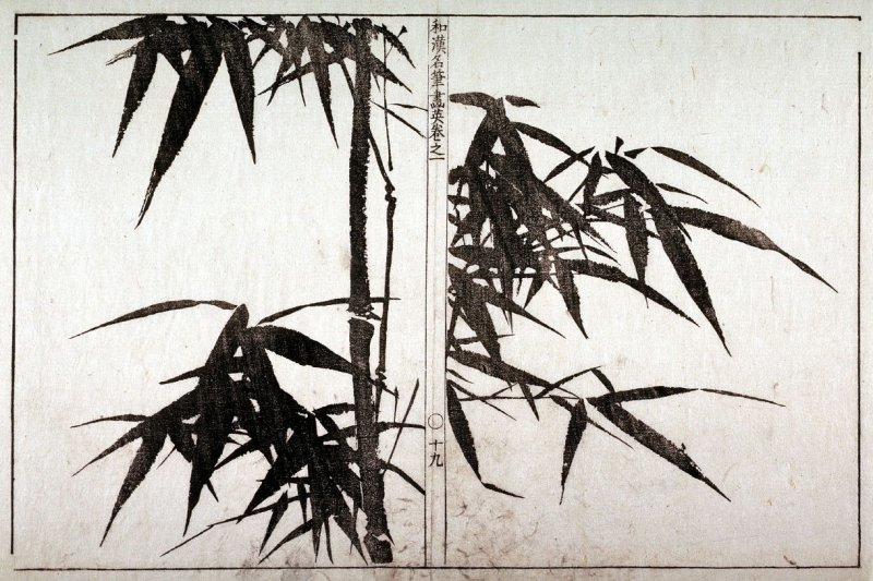 Bamboo in a Chinese Mirror