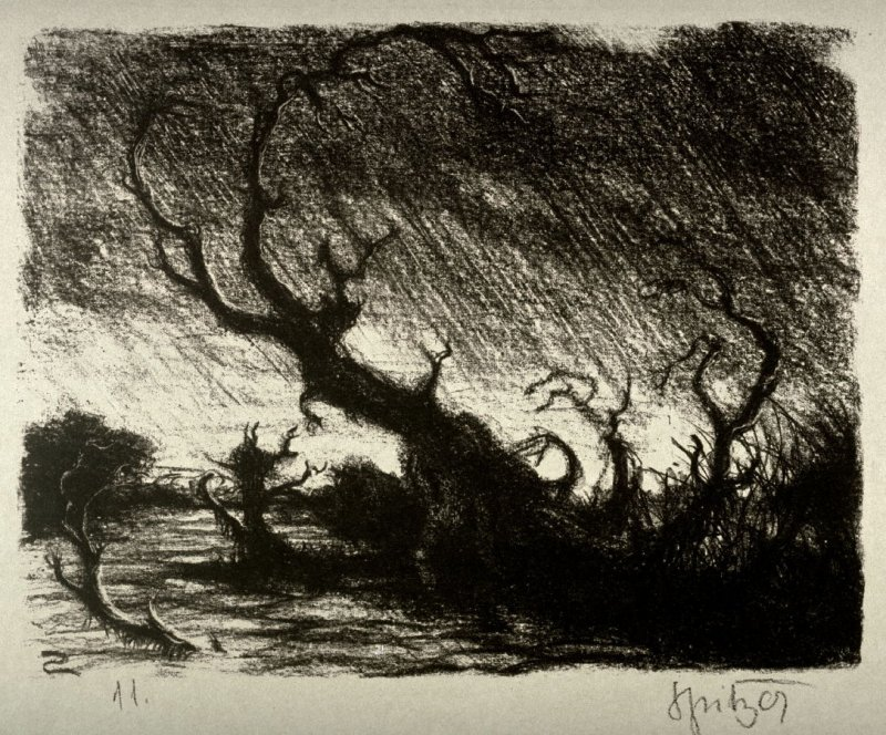 One of Twelve original lithographs. Subject: Forest at the Rhine