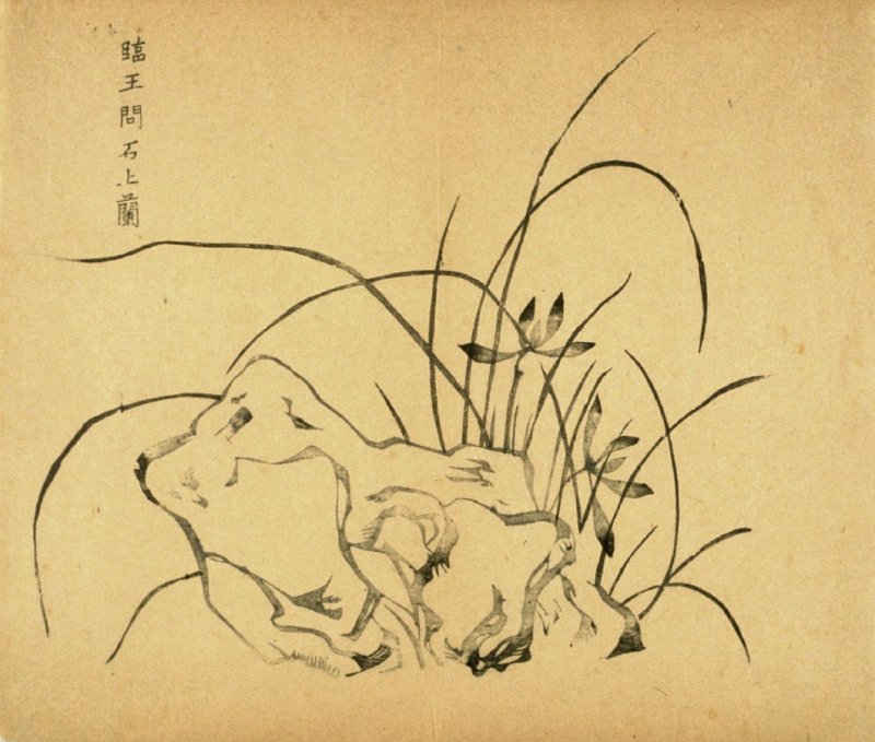 """Orchids Above a Rock"", No.13 from the Volume on Orchids - from: The Treatise on Calligraphy and Painting of the Ten Bamboo Studio"