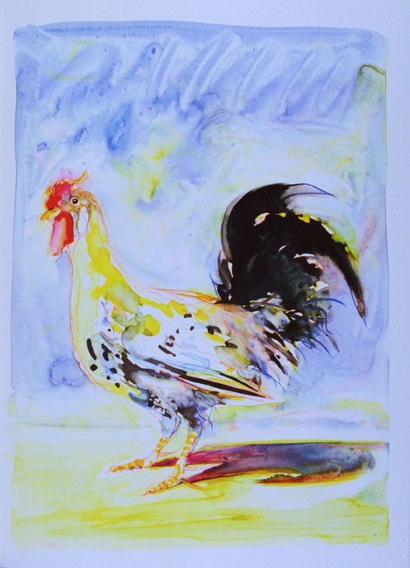 Rooster, plate opposite page 298 in the book The Physiology of Taste (San Francisco: The Arion Press, 1994)
