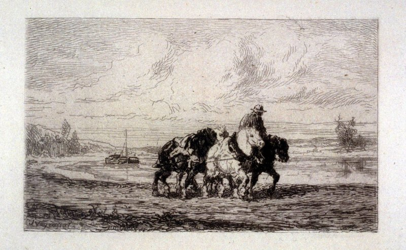 Man with horses