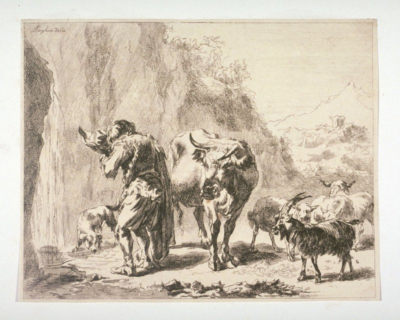 [Man and cattle at waterfall]