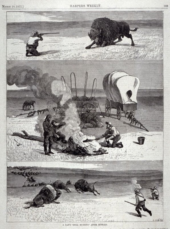 """A day's """"Still Hunting"""" after Buffalo - from Harper's Weekly, (March 10. 1877, p. 193"""