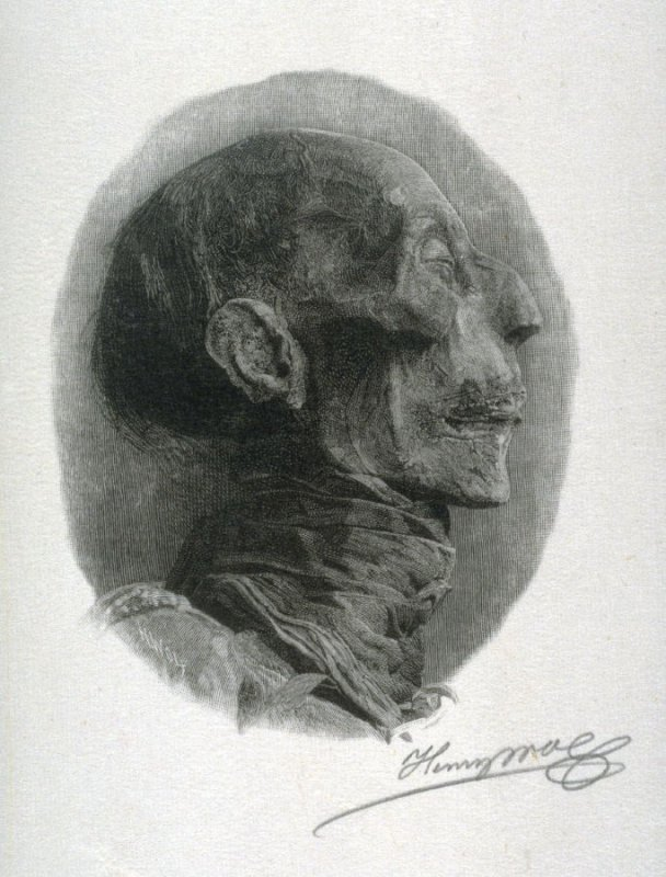 From Photograph: Profile of Rameses II
