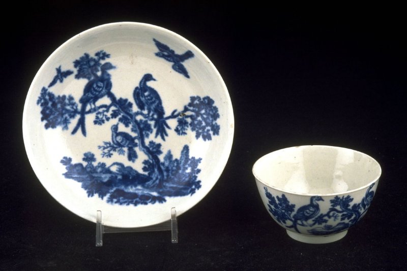 Teacup and saucer with exotic birds