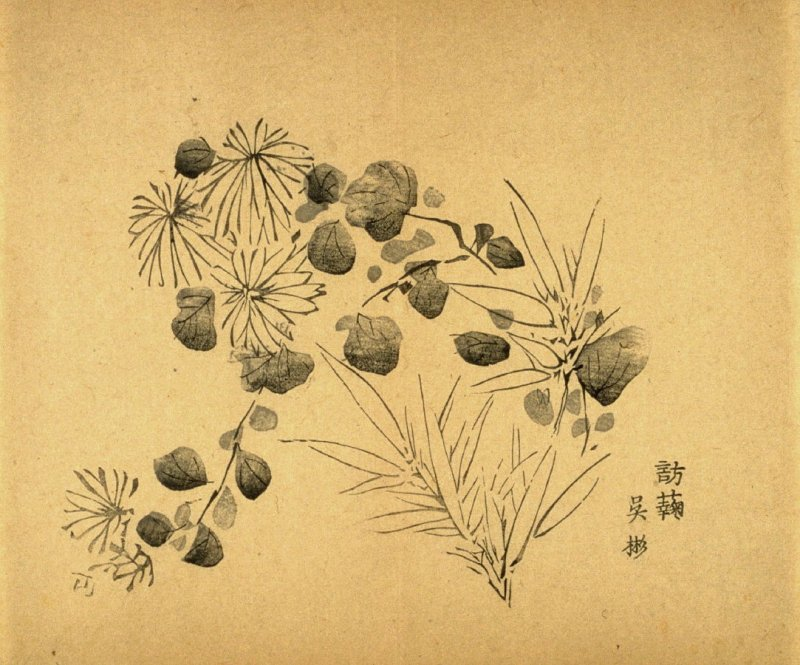 """""""Visiting the Chrysanthemums""""- No.18 from the Volume on Bamboo - from: The Treatise on Calligraphy and Painting of the Ten Bamboo Studio"""